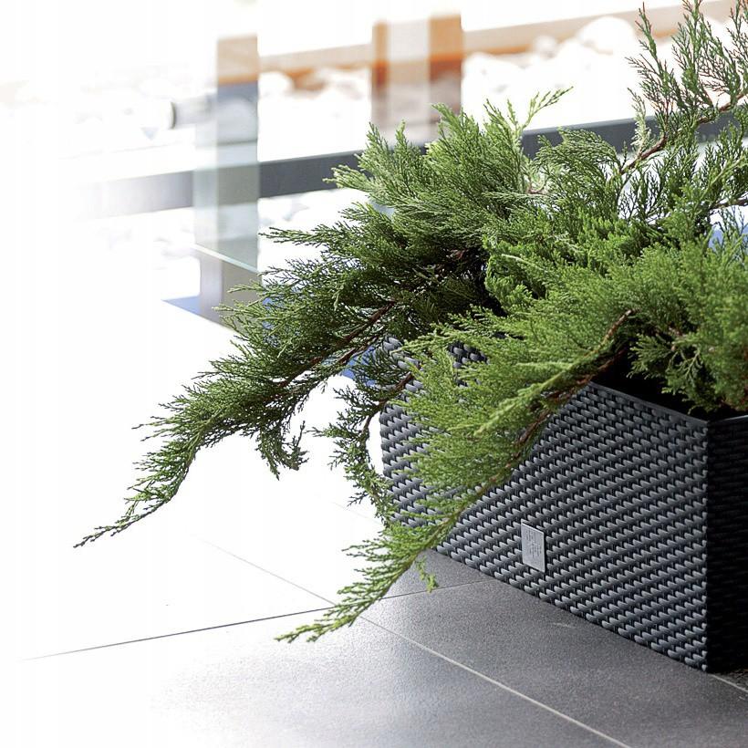 květináč 50x18x19cm 17L balkónový zahradní megamix.shop